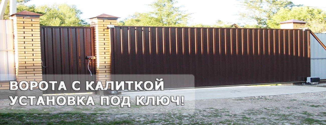 Ворота калитка Раменское